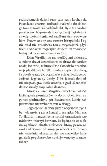 rozdział - strona 87