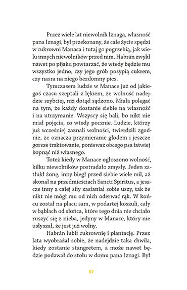 rozdział - strona 88