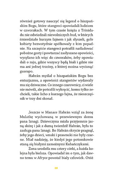 rozdział - strona 89